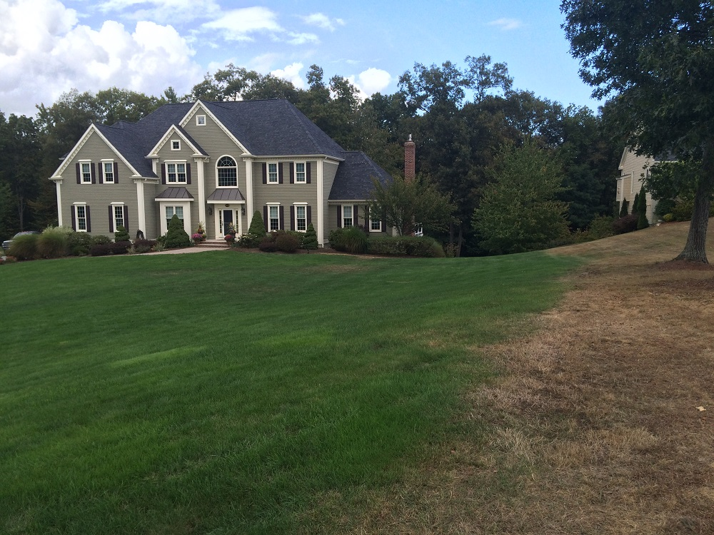 Organic Lawn Fertilization Reading, MA